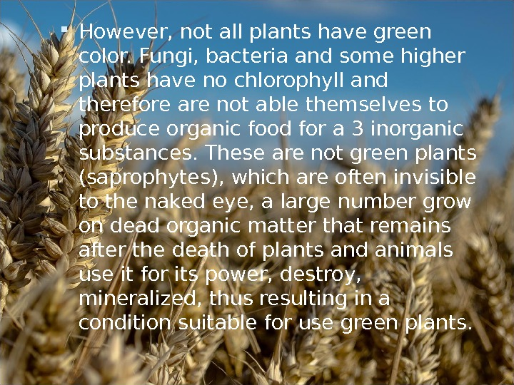 However, not all plants have green color. Fungi, bacteria and some higher plants have no