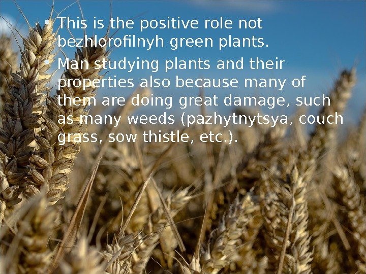 This is the positive role not bezhlorofilnyh green plants.  Man studying plants and their