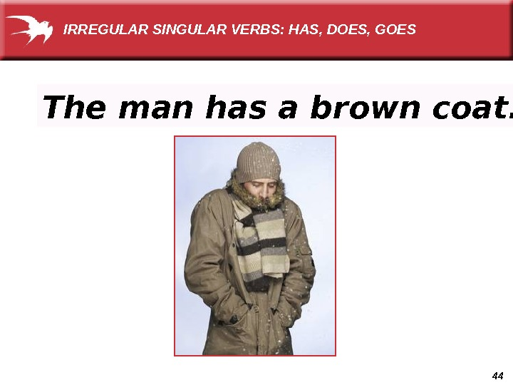 44 The man has a brown coat. IRREGULAR SINGULAR VERBS: HAS, DOES, GOES