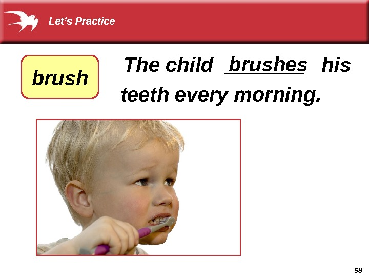 58  The child _______  his  teeth every morning. brushes brush  Let's Practice