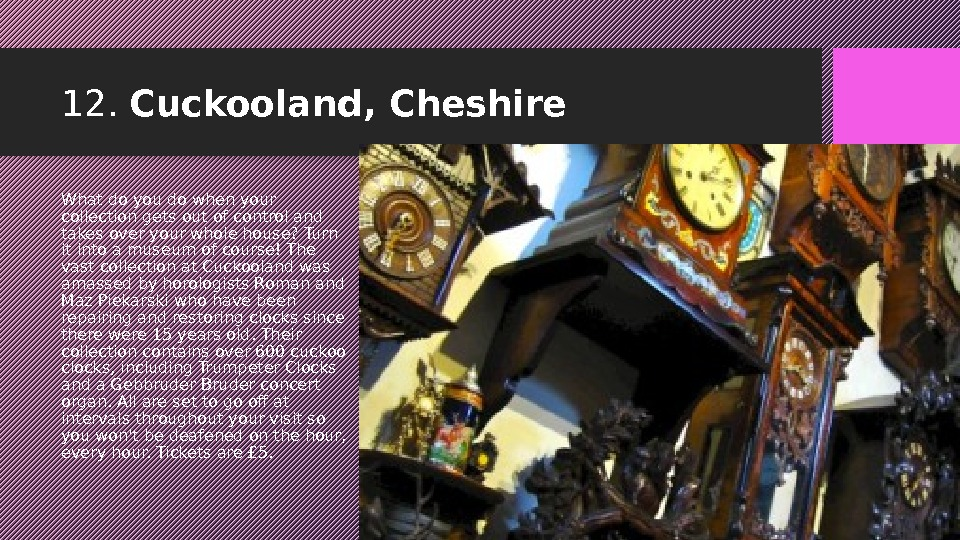 12.  Cuckooland, Cheshire What do you do when your collection gets out of control and