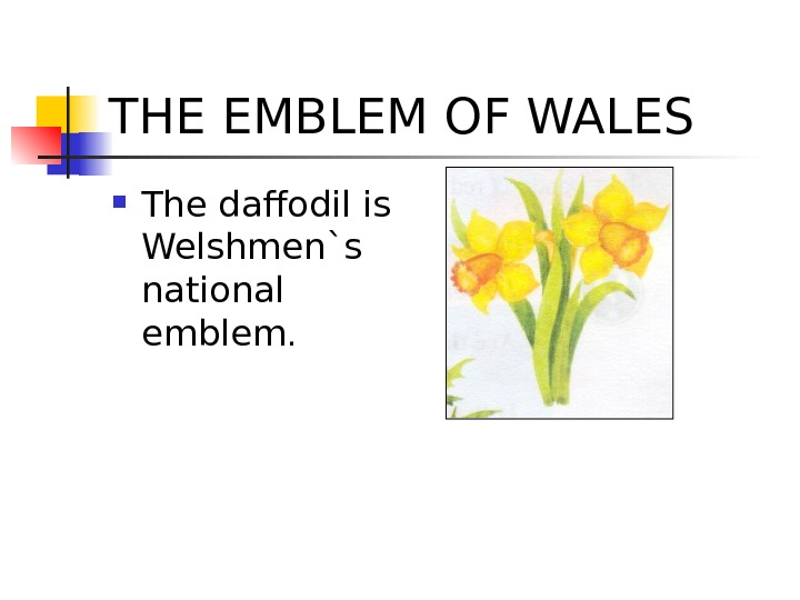 THE EMBLEM OF WALES The dafodil is Welshmen`s national emblem.