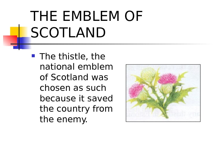 THE EMBLEM OF SCOTLAND The thistle, the national emblem of Scotland was chosen as such because
