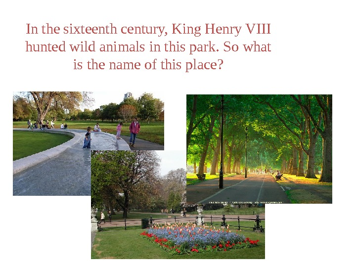 In the sixteenth century, King Henry VIII hunted wild animals in this park. So what is