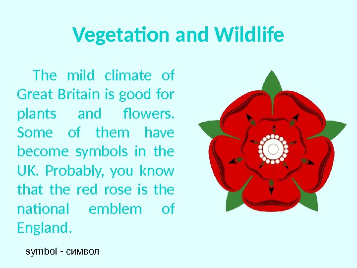 Vegetation and Wildlife  The mild climate of Great Britain is good for plants and flowers.