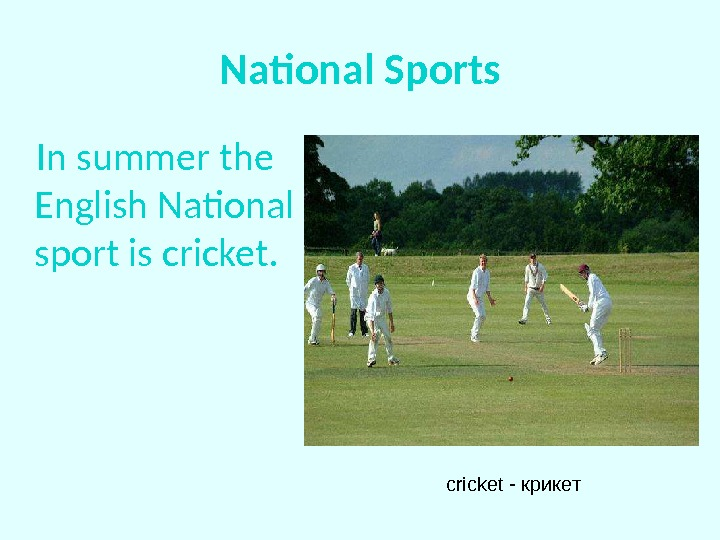 National Sports In summer the English National sport is cricket - крикет
