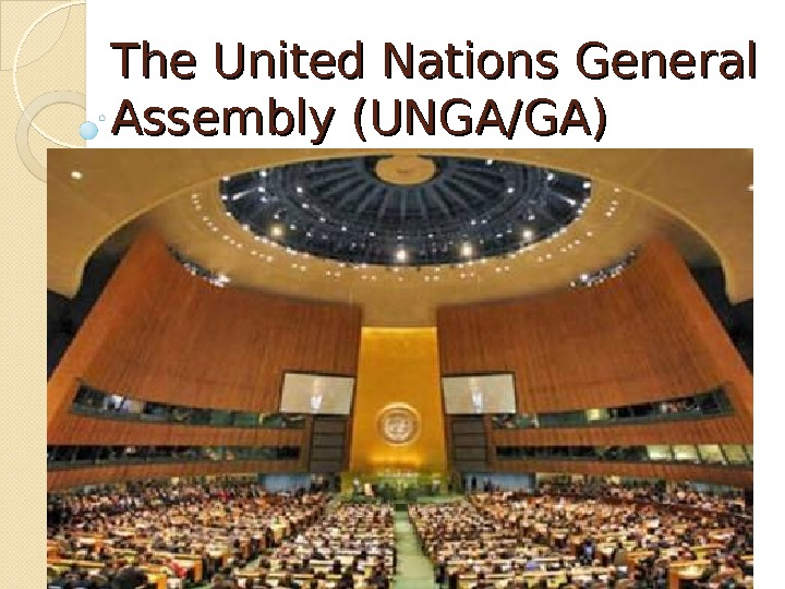 The United Nations General Assembly (UNGA/GA)