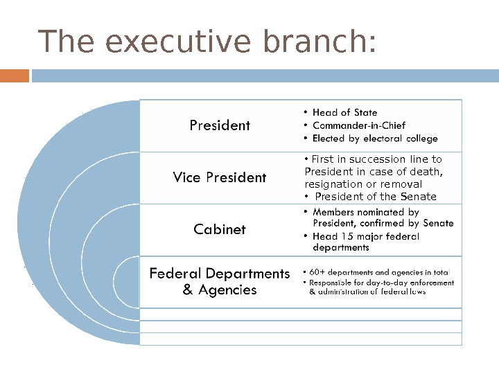 The executive branch:  •  First in succession line to President in case of death,