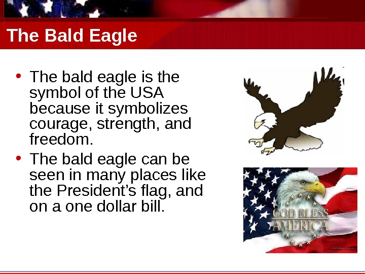 The Bald Eagle • The bald eagle is the symbol of the USA because it symbolizes