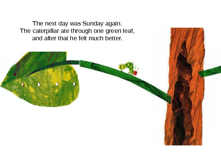 The next day was Sunday again. The caterpillar ate through one green leaf, and