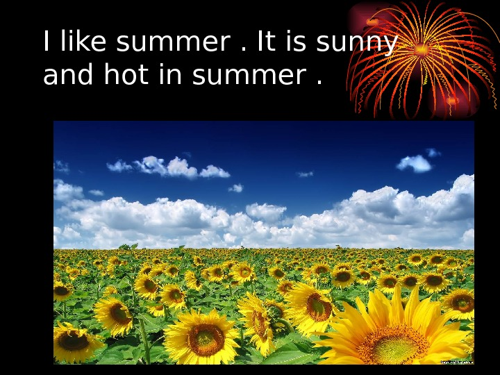 I like summer. It is sunny and hot in summer.