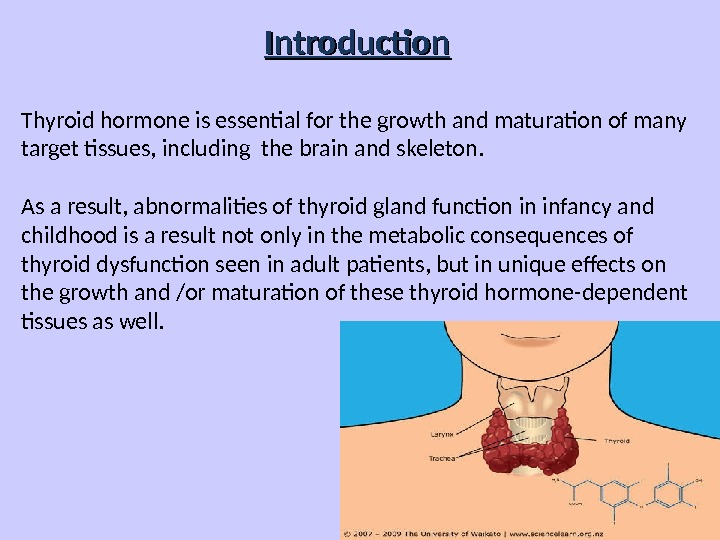 Introduction Thyroid hormone is essential for the growth and maturation of many target tissues, including the