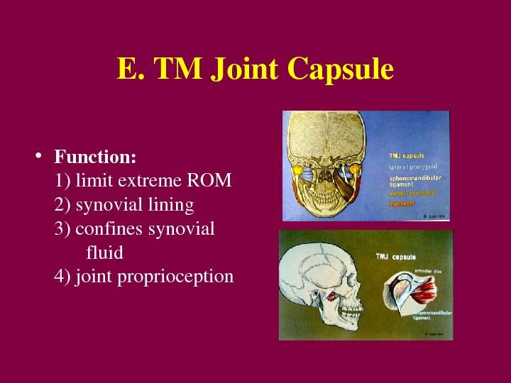 E. TMJoint. Capsule • Function:  1)limitextreme. ROM 2)synoviallining 3)confinessynovial fluid 4)jointproprioception