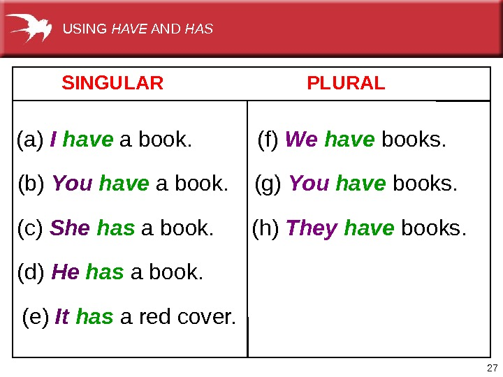 27   SINGULAR   PLURAL (a)  I  have abook. (b)  You