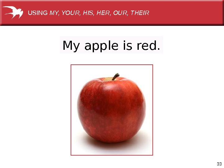 33 My apple is red. USING MY, YOUR, HIS, HER, OUR, THEIR