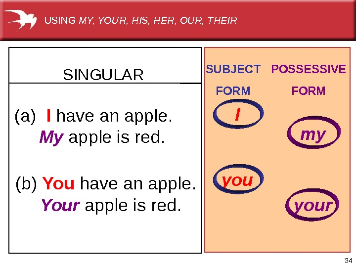 34(a)  I have anapple.  My appleisred. (b)  You have anapple.  Your appleisred.