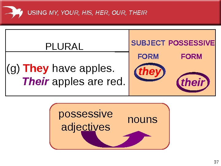 37(g)  They have apples.  Their applesarered. PLURAL SUBJECT FORM POSSESSIVE FORM they their nounspossessive