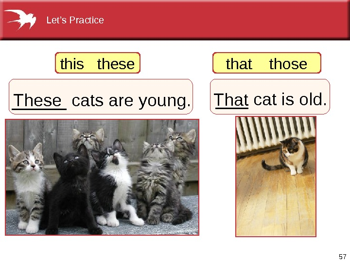 57_____ catsareyoung. These ___ catisold. Thatthisthese thatthose Let's. Practice