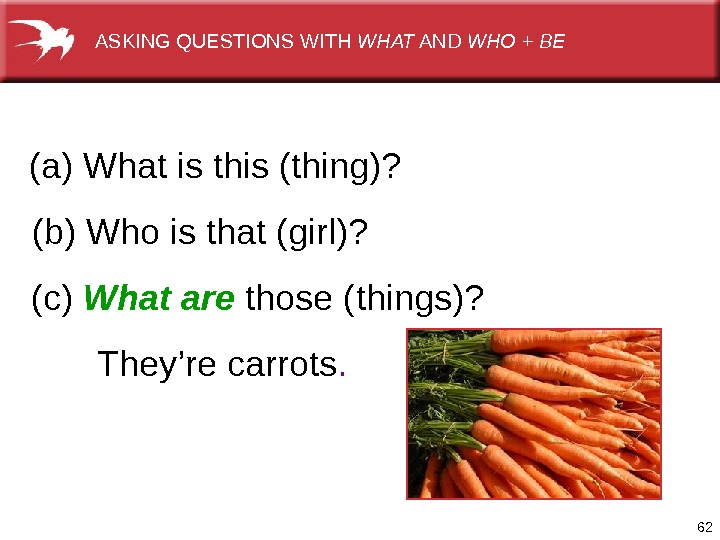 62 They'recarrots. (b)Whoisthat(girl)?  (c) What are those(things)? (a)Whatisthis(thing)?  ASKINGQUESTIONSWITH WHAT AND WHO + BE