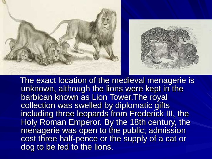 The exact location of the medieval menagerie is unknown, although the lions were