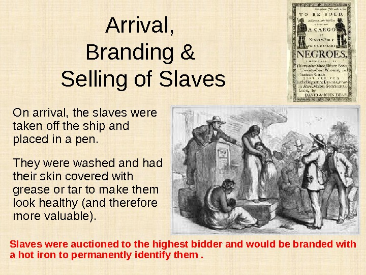 Arrival,  Branding & Selling of Slaves On arrival, the slaves were taken off the ship