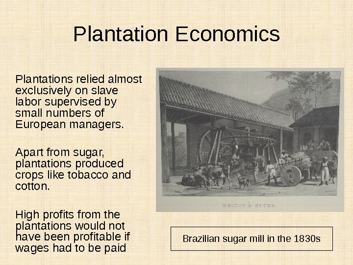 Plantation Economics Plantations relied almost exclusively on slave labor supervised by small numbers of European managers.