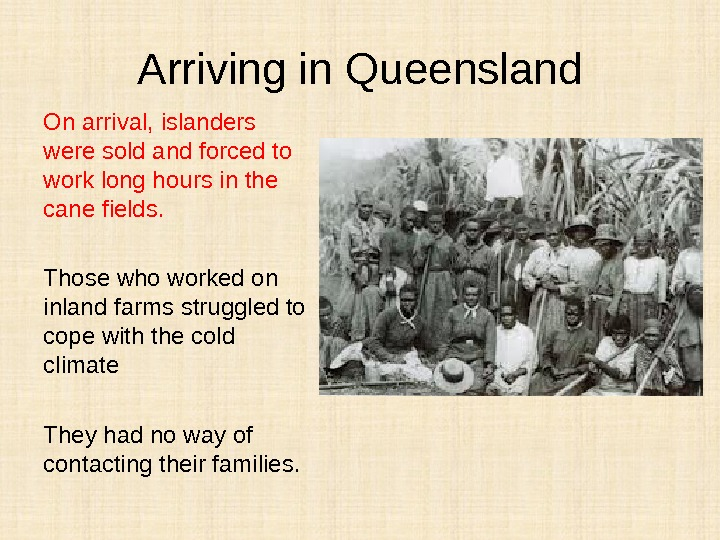 Arriving in Queensland On arrival, islanders were sold and forced to work long hours in the
