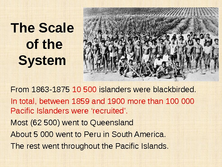 The Scale of the System From 1863 -1875 10 500 islanders were blackbirded. In total, between