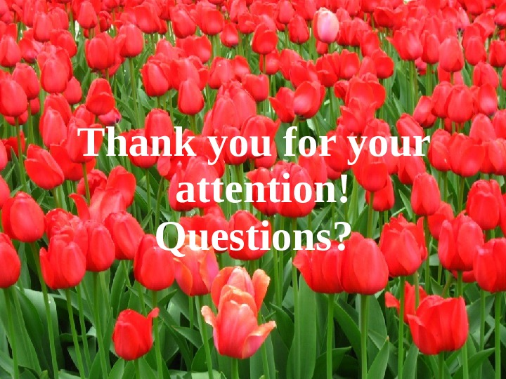 Thank you for your attention ! Questions ?