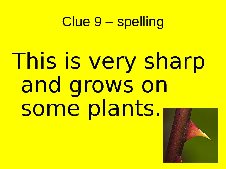 Clue 9 – spelling This is very sharp and grows on some plants.