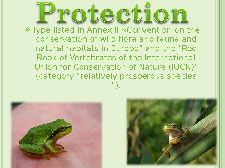 Type listed in Annex II «Convention on the conservation of wild flora and fauna and
