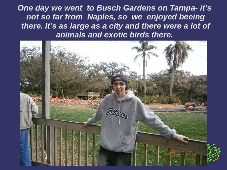 One day we went to Busch Gardens on Tampa- it's  not so far from Naples,