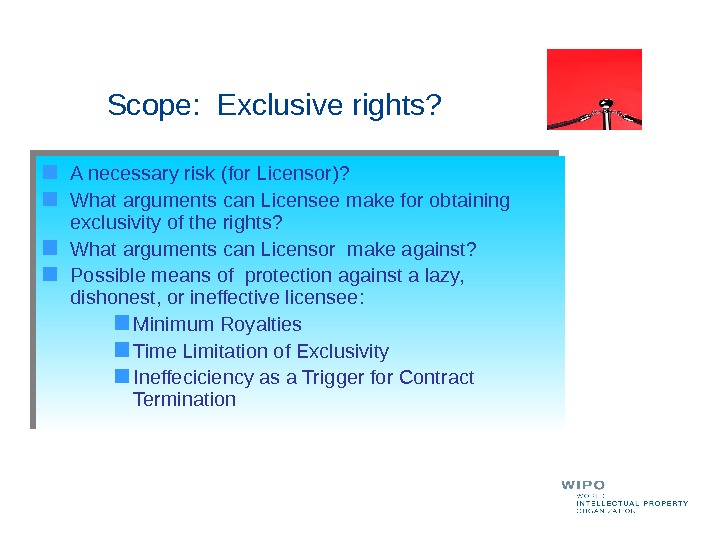 Scope:  Exclusive rights?  A necessary risk (for Licensor)?  What arguments can Licensee make