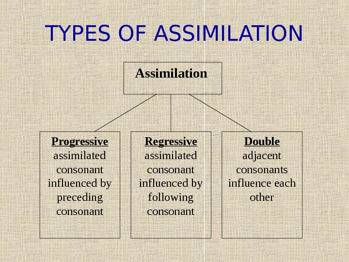 TYPES OF ASSIMILATION Assimilation  Progressive assimilated consonant influenced by preceding consonant Double adjacent