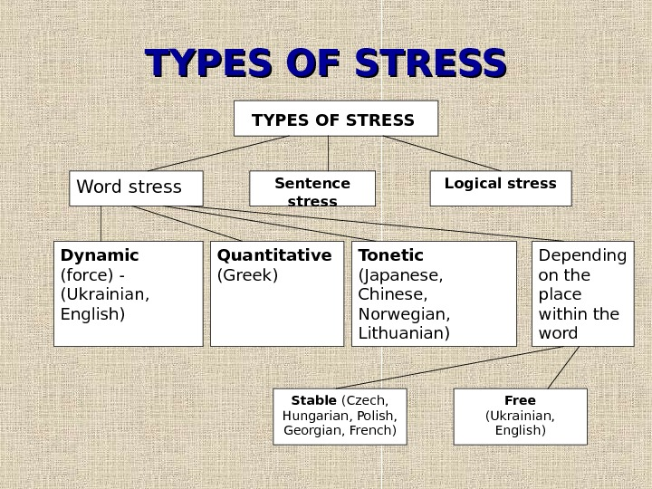 TYPES OF STRESS  Word stress Sentence stress Logical stress Dynamic (force) -
