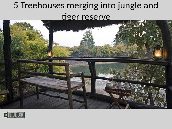 5 Treehouses merging into jungle and tiger reserve