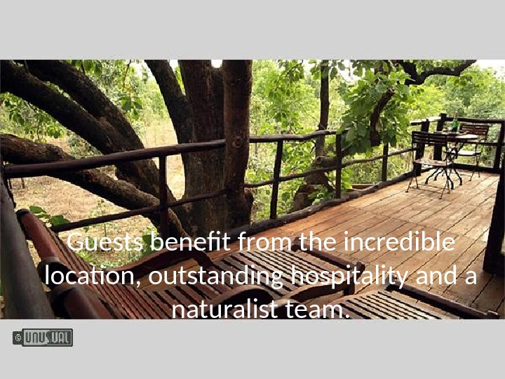 Guests benefit from the incredible location, outstanding hospitality and a naturalist team.
