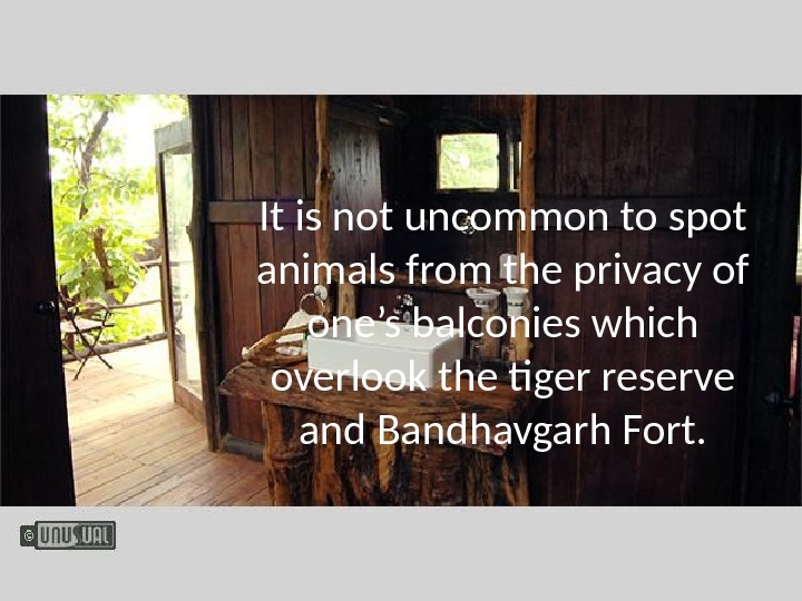 It is not uncommon to spot animals from the privacy of one's balconies which overlook the