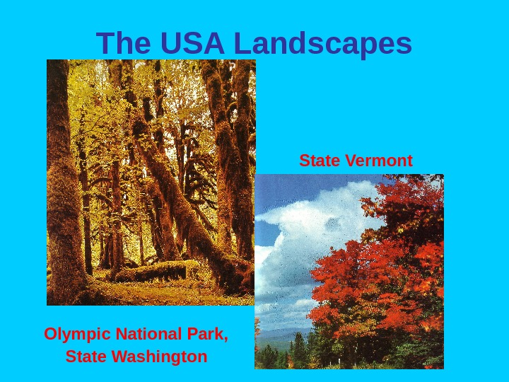 The USA Landscapes     State Vermont    Olympic National