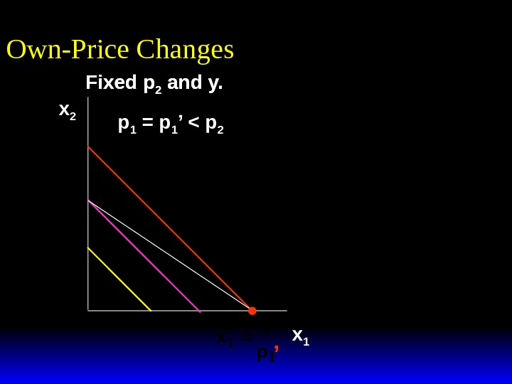 Fixed p 2 and y. Own-Price Changes x 2 x 1 Fixed p 2 and y.
