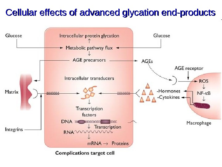 Cellular effects of advanced glycation end-products