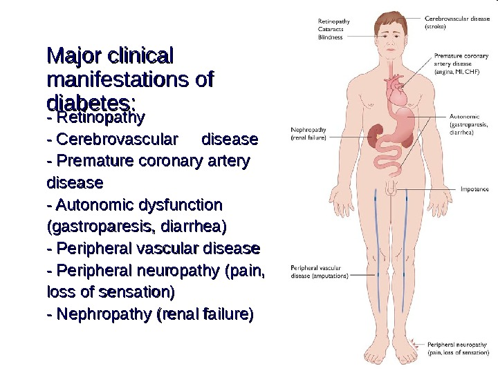 Major clinical manifestations of diabetes: - Retinopathy - Cerebrovascular disease - Premature coronary artery