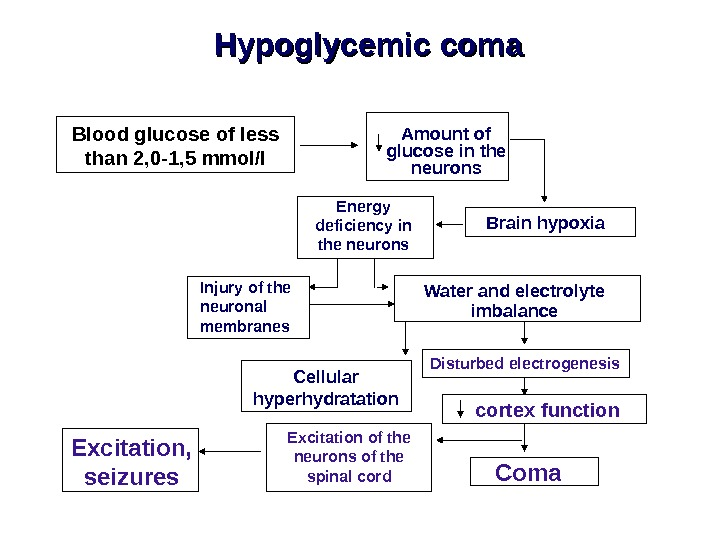 Hypoglycemic coma Blood glucose of less than 2, 0 -1, 5 mmol/l Amount of