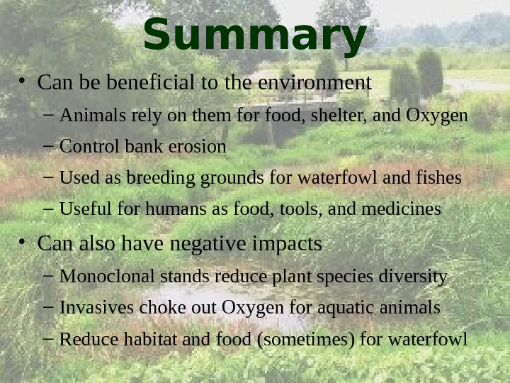 Summary • Can be beneficial to the environment – Animals rely on them for food, shelter,