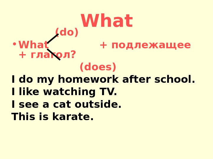 What      (do) • What    + подлежащее + глагол?