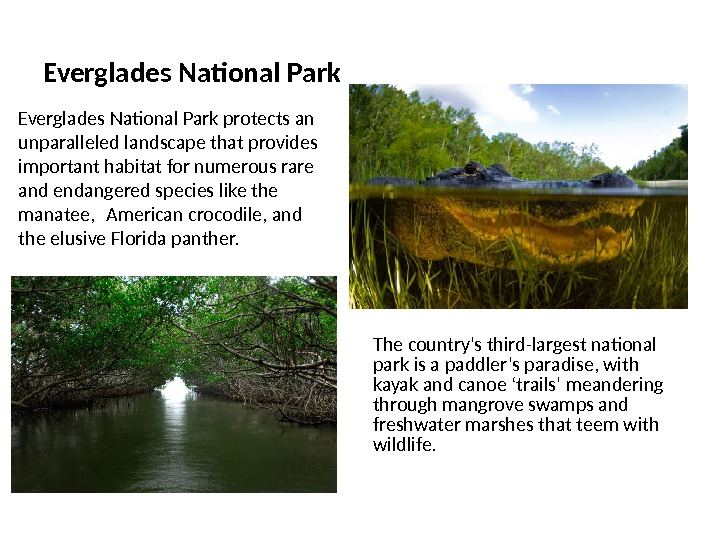 Everglades National Park The country's third-largest national park is a paddler's paradise, with kayak and canoe