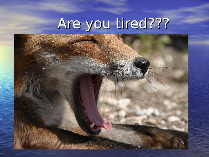 Are you tired ? ? ?