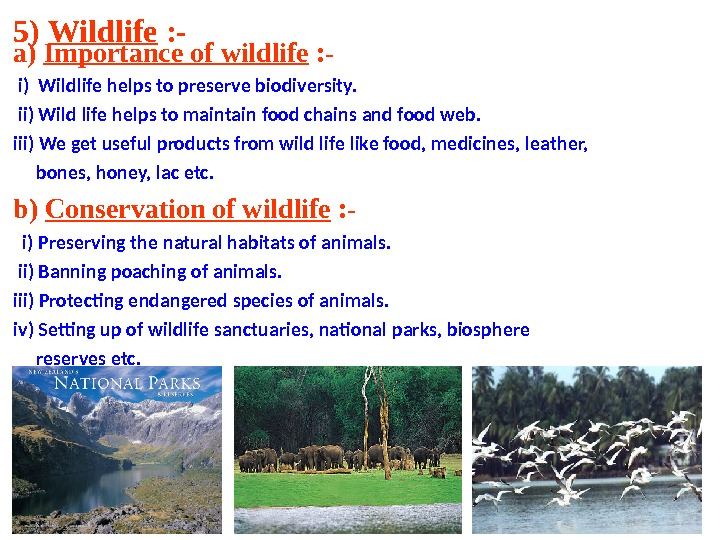 5) Wildlife : - a) Importance of wildlife : - i) Wildlife helps to preserve biodiversity.
