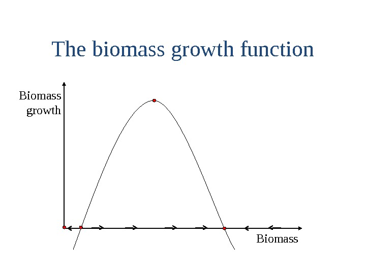 The biomass growth function Biomass growth