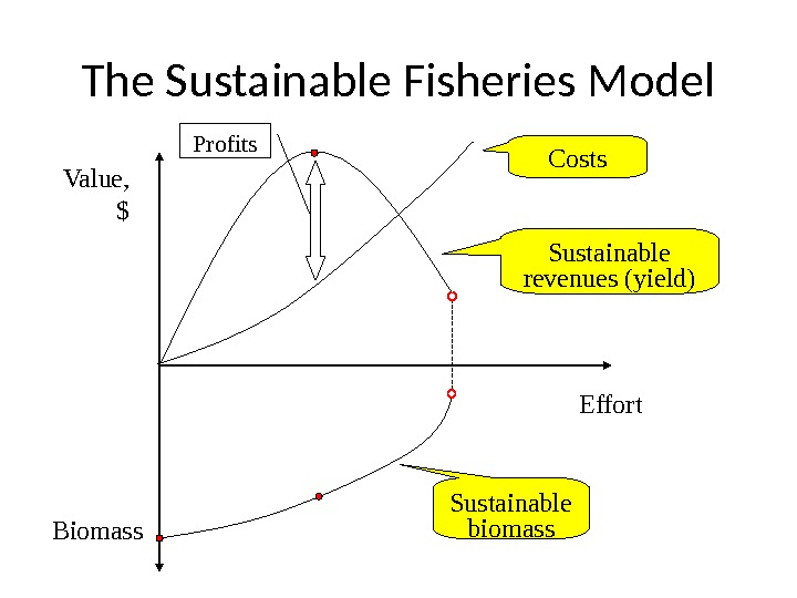 The Sustainable Fisheries Model Value, $ Effort Biomass Costs Sustainable revenues (yield) Sustainable biomass. Profits